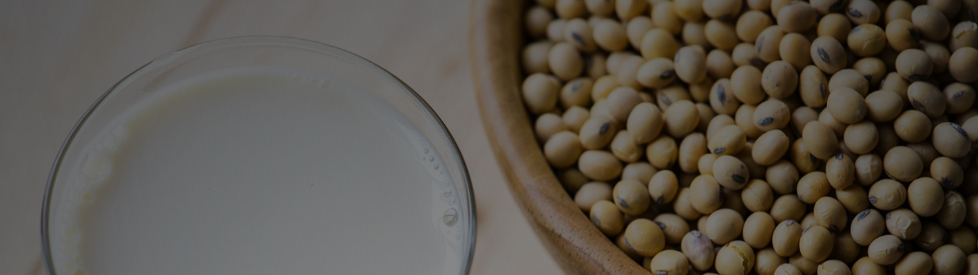 Soy Food Kitchen